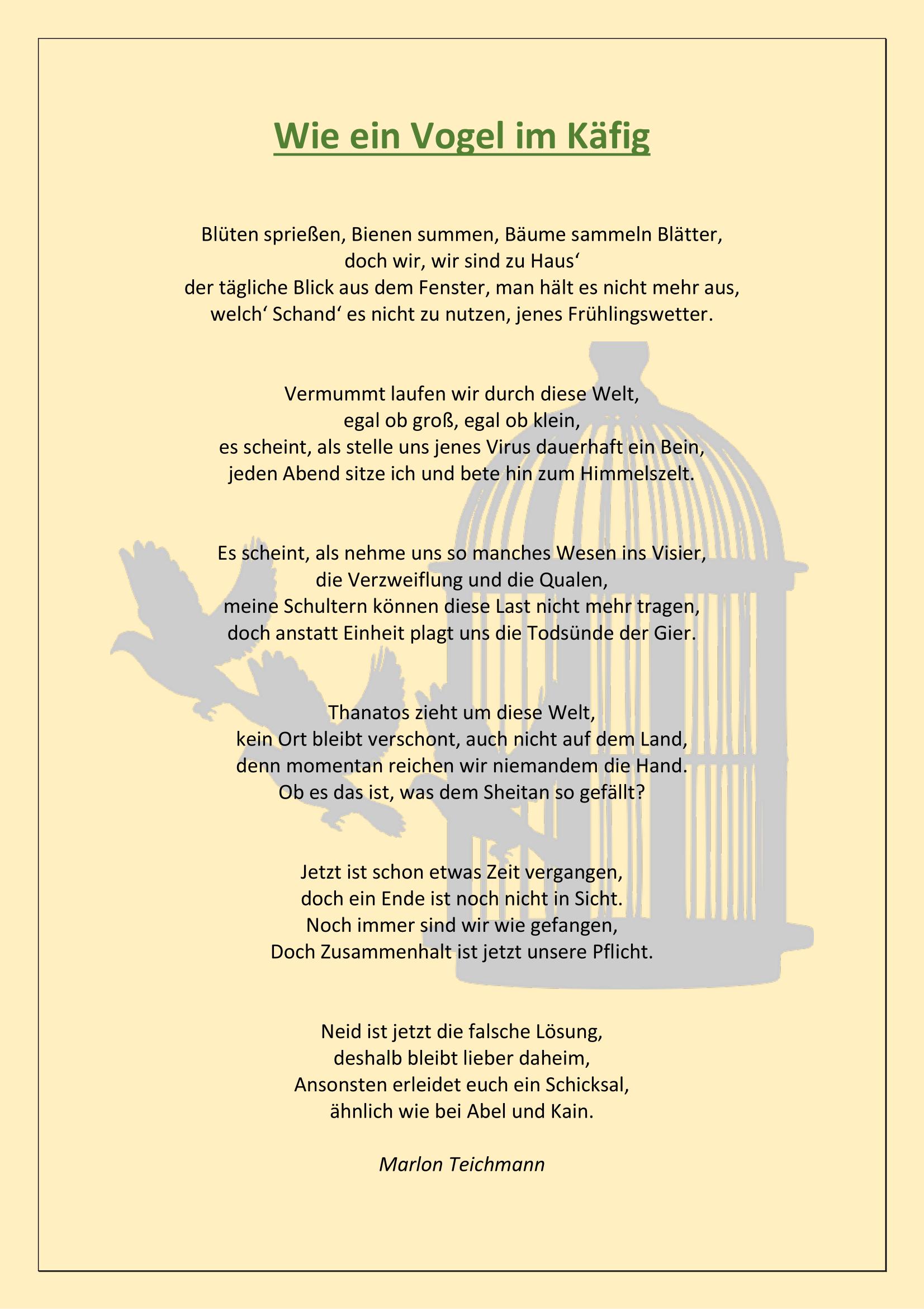 Wie ein Vogel im Käfig